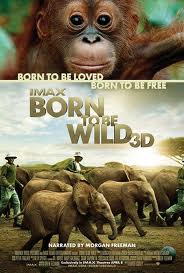 Ver Born To Be Wild (2011) online