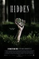 Hidden 2011