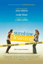 VER SUNSHINE CLEANING ONLINE