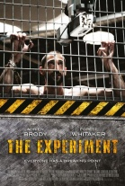 VER THE EXPERIMENT ONLINE