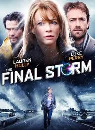 Ver The Final Storm Online